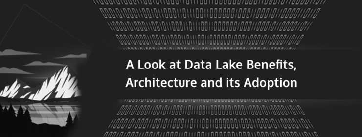 A look at Data Lake benefits, architecture and its adoption