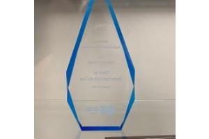BCBSM Project Team Award   2013 – Member Portal Team